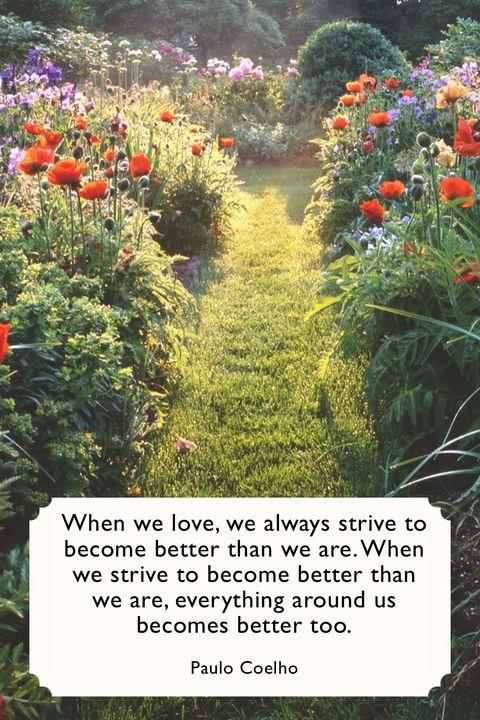 Paulo Coelho Valentines Day Quotes