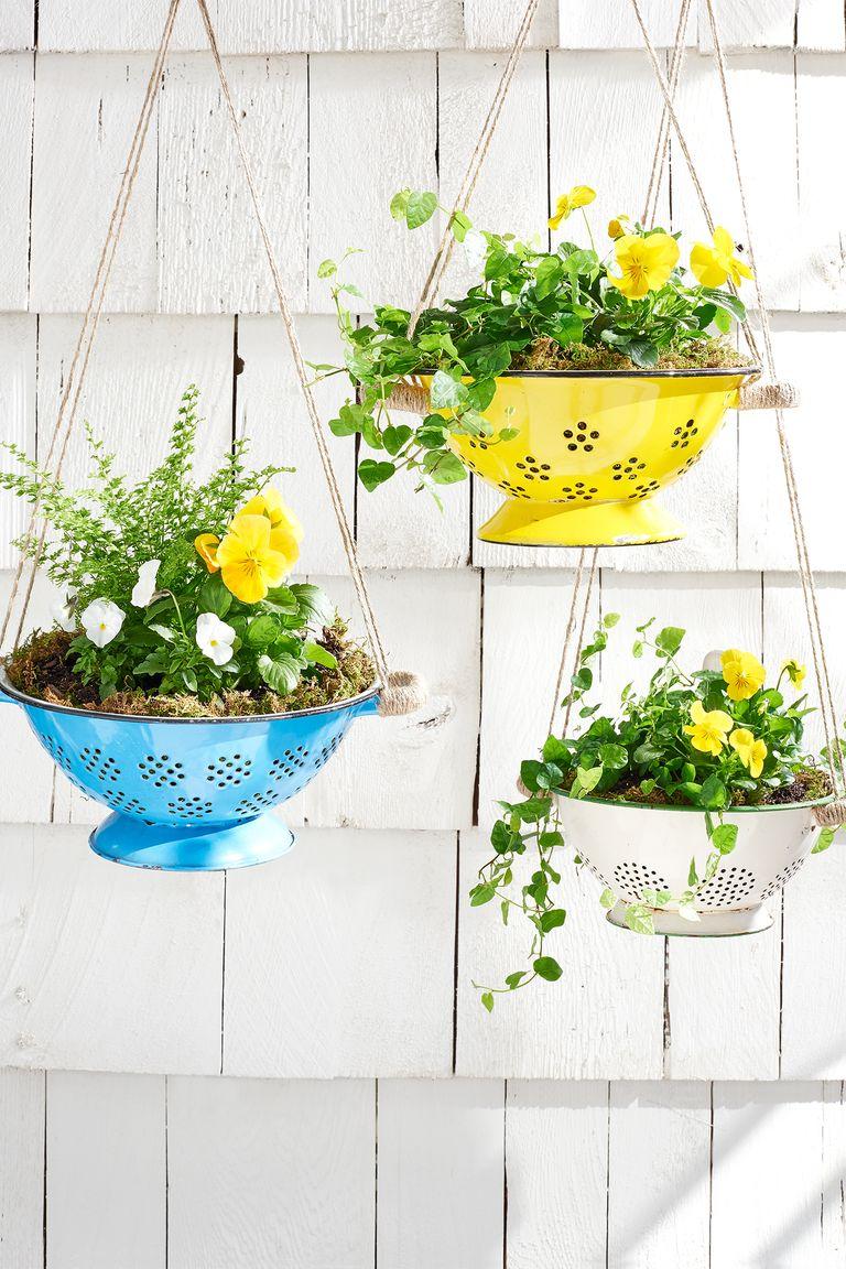 colander planter