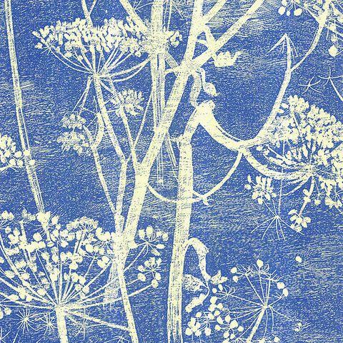 Cole & Son Cowparsley Wallpaper, Sky