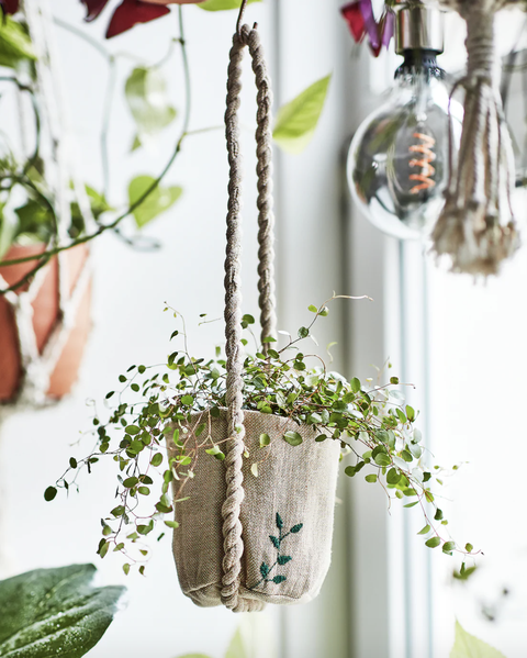 macetero colgante de la colección botanisk de ikea