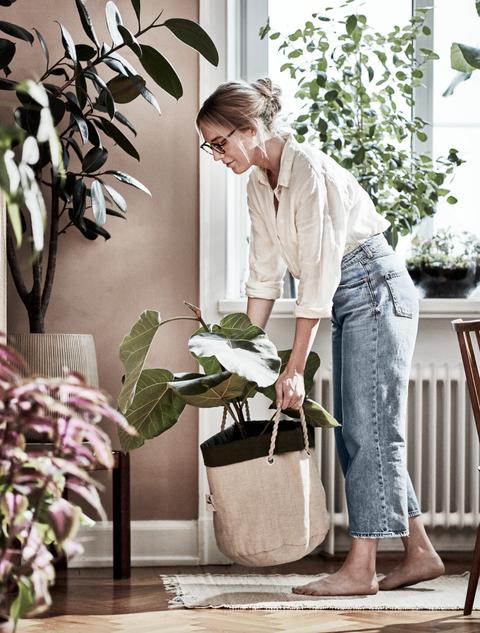 cesta de cultivo botanisk de ikea