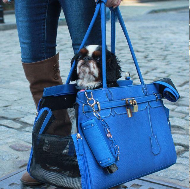 Bag, Blue, Handbag, Hand luggage, Shoulder, Fashion, Denim, Fashion accessory, Travel, Jeans,