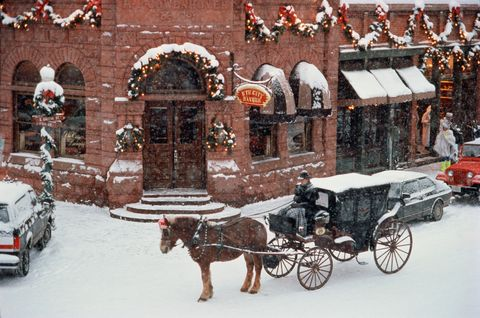 USA,Colorado,Aspen,horse and carriage in winter snow