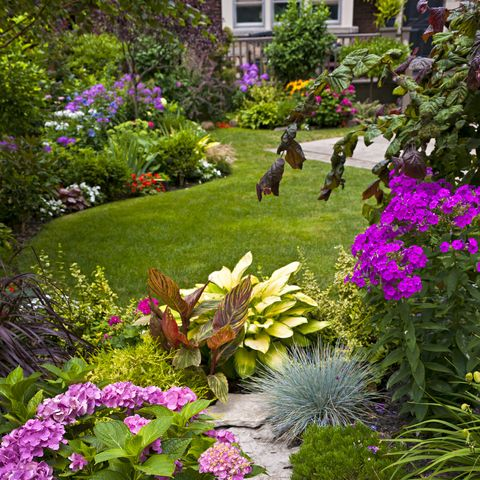 Colorful flowers in a neat garden
