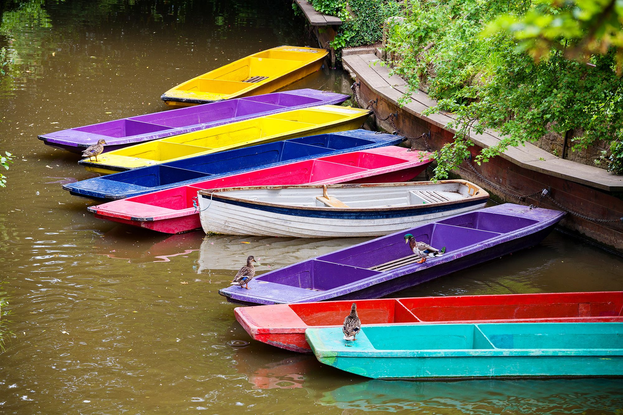Colourful wooden boats in Oxford