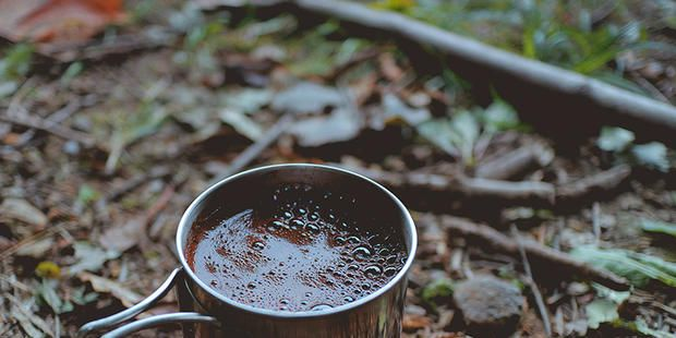 Funghi in polvere nel caffè