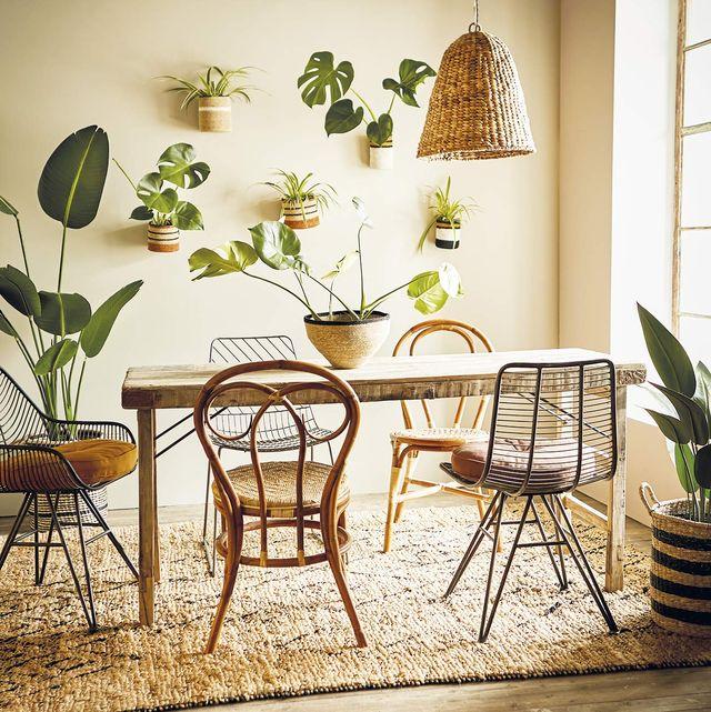 comedor decorado con plantas