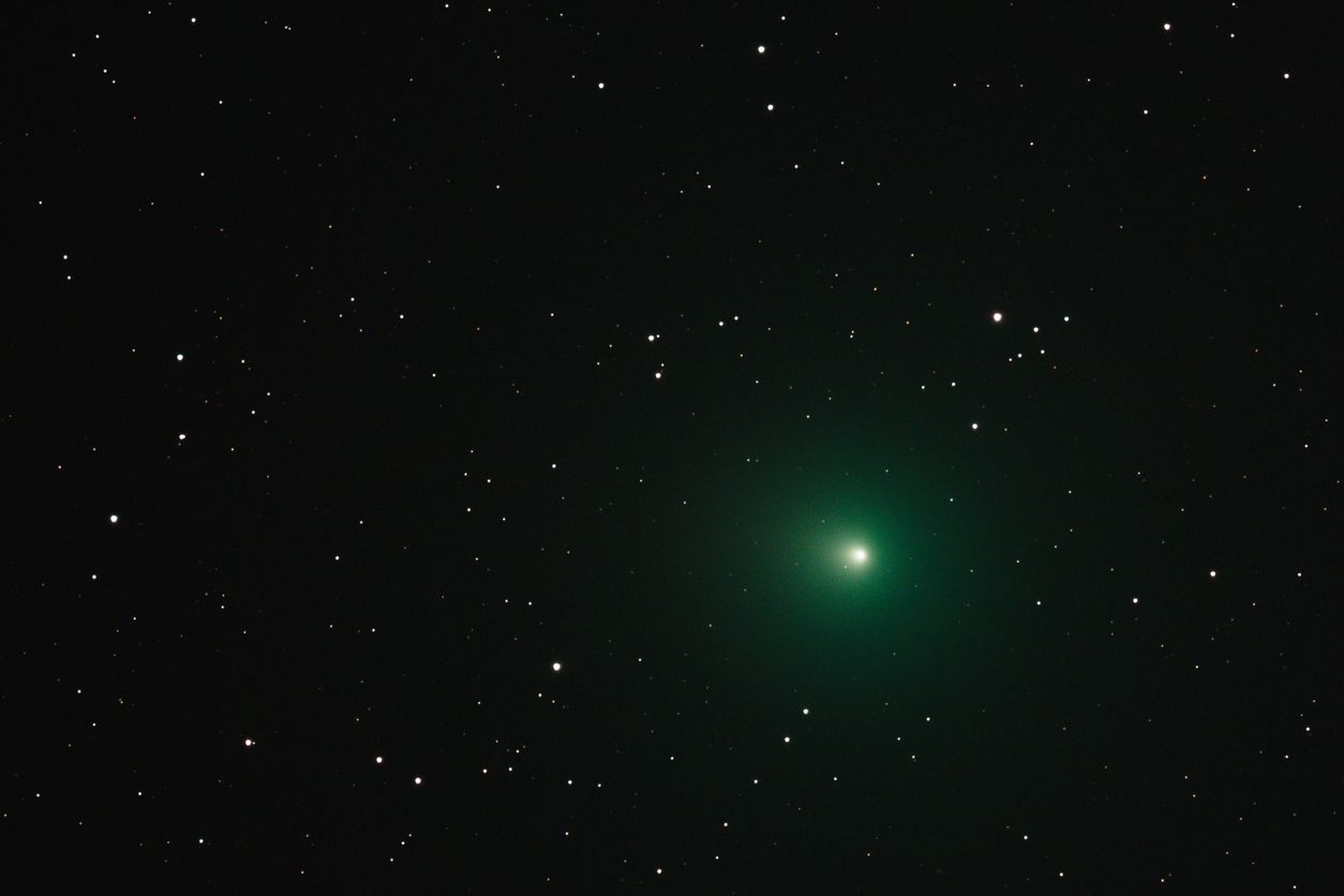Astronomers share stunning photos of a bright, green 'Christmas' comet passing Earth