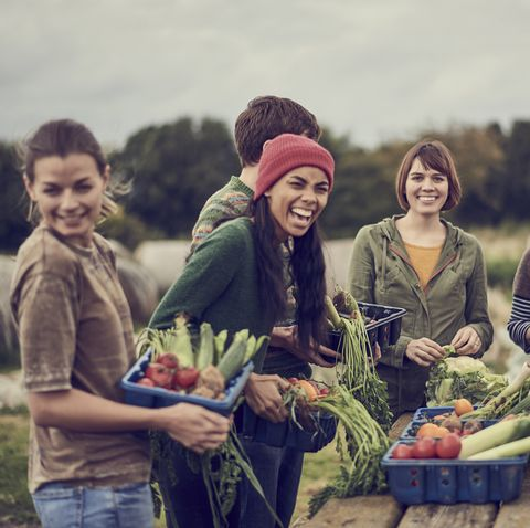 Community farming peers standing together with the allotment produce, laughing