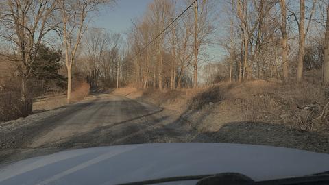 Road, Tree, Sky, Winter, Infrastructure, Wildlife, Rural area, Geology, Thoroughfare, Asphalt,