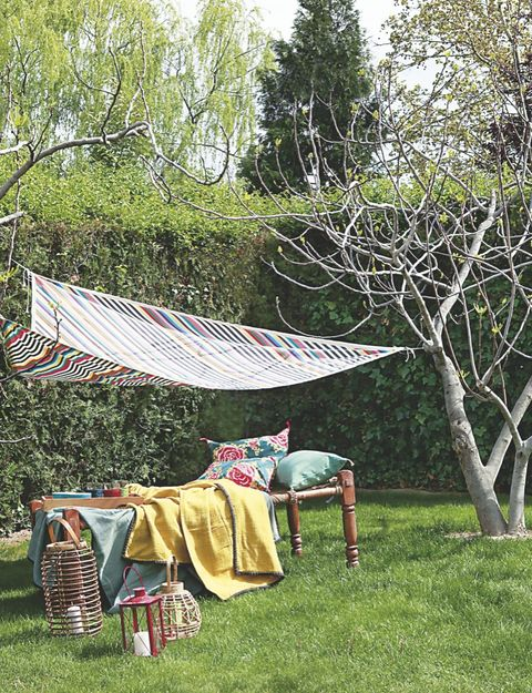 Tree, Yard, Leaf, Backyard, Textile, Spring, Linens, Adaptation, Rural area, Plant,