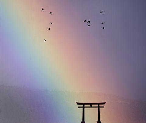 japanese tori gatecomposite image rainbow and birds