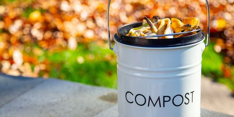 Compost bin outside on top of wall