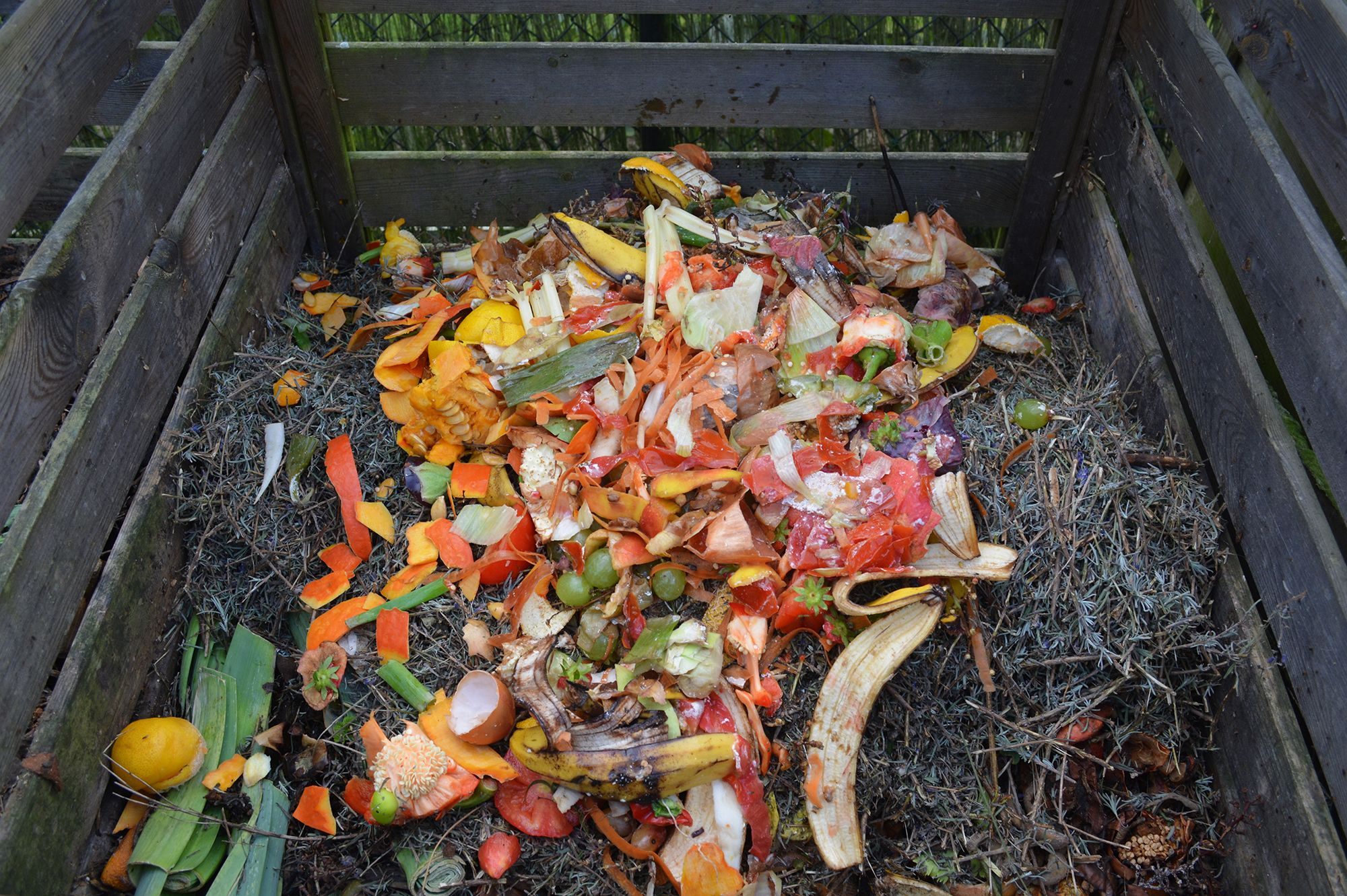 10 steps for making your own compost heap at home