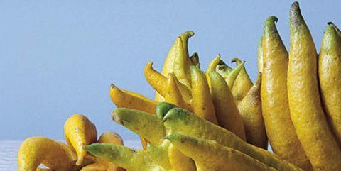 Buddha's hand, Food, Yellow, Plant, Natural foods, Fruit, Ingredient, Produce, Vegetarian food, Legume,