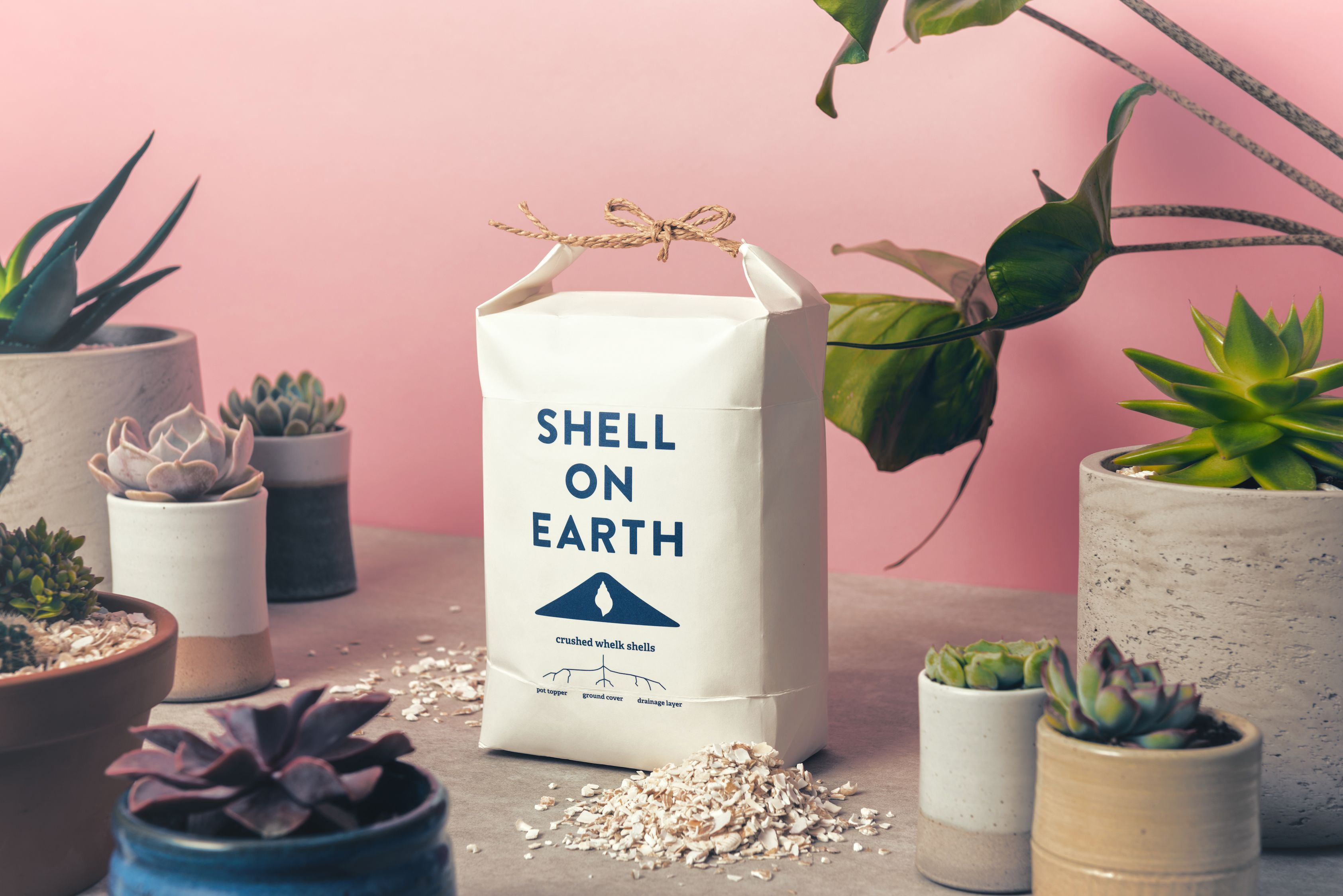 11 eco-friendly home buys from Notonthehighstreet