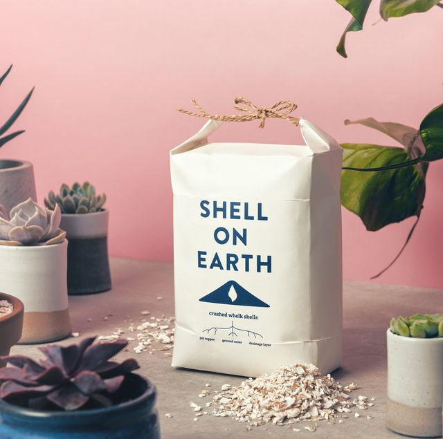 eco friendly picks from notonthehighstreet