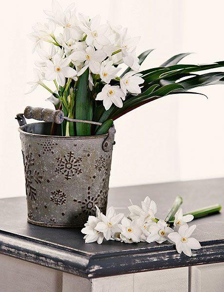 Flower, Flowerpot, White, Floristry, Cut flowers, Plant, Flower Arranging, Floral design, Bouquet, Flowering plant,