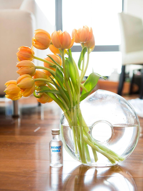 Decorar con plantas - 15 trucos para saber cómo decorar con flores