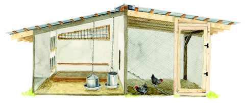illustration of a chicken coop