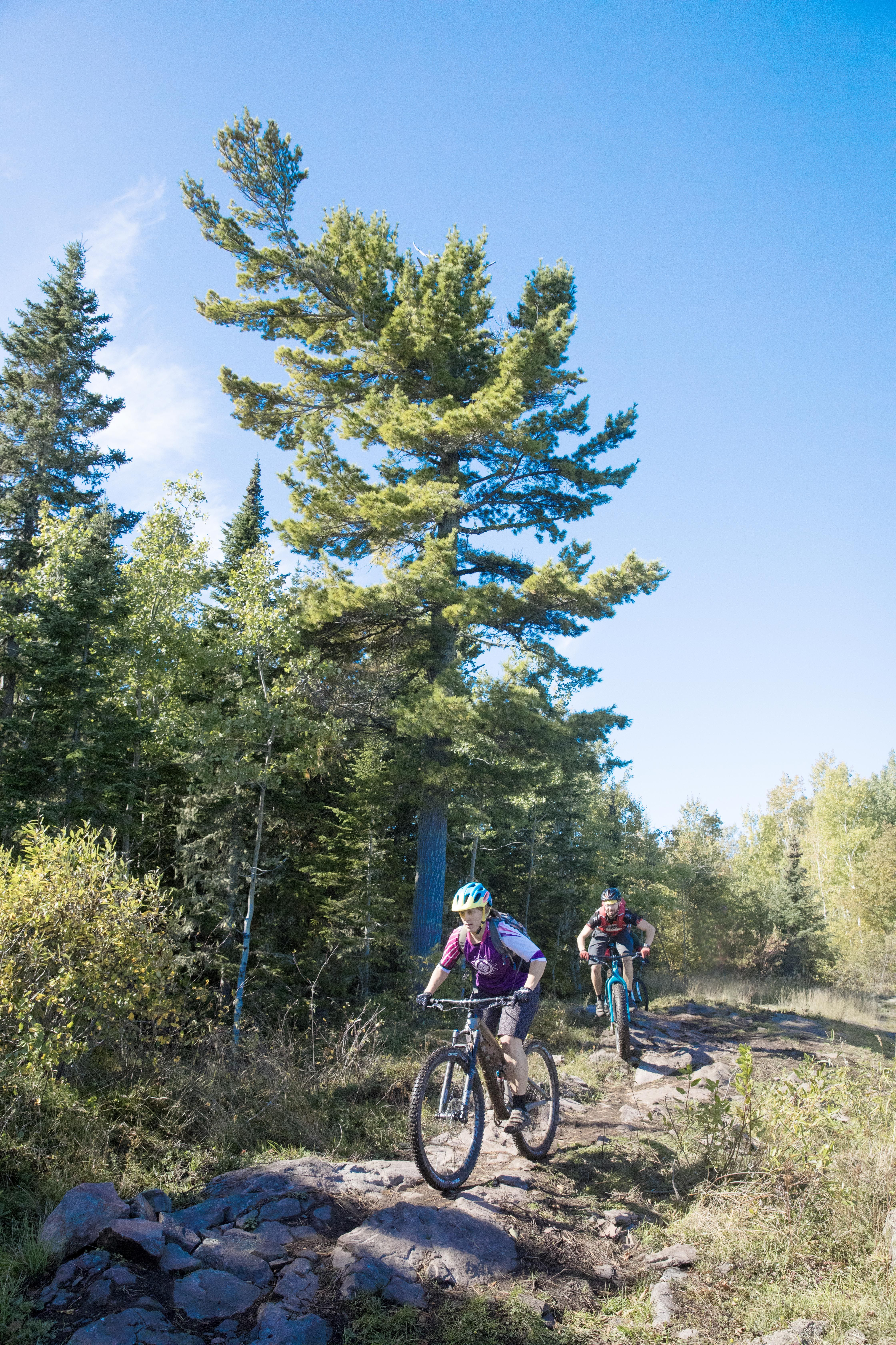 Best Mountain Bike Trails - 6 Trails You Didn't Know About