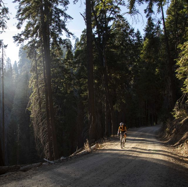 lael wilcox riding a gravel road in the sierra nevada mountains