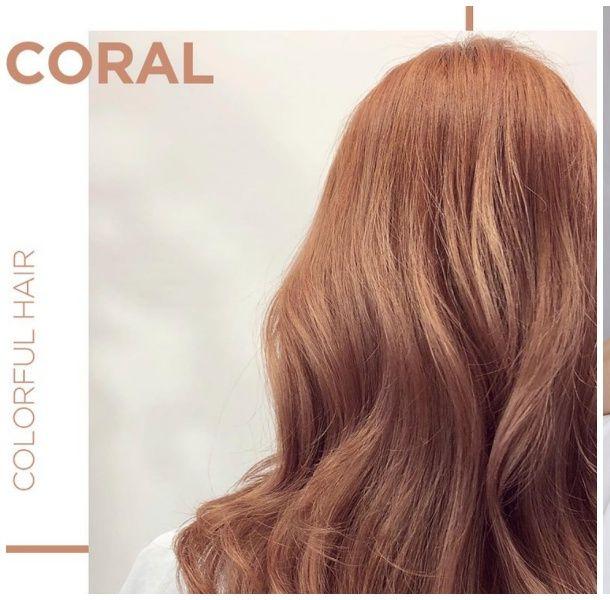 2019髮色趨勢灰金咖啡色珊瑚橘
