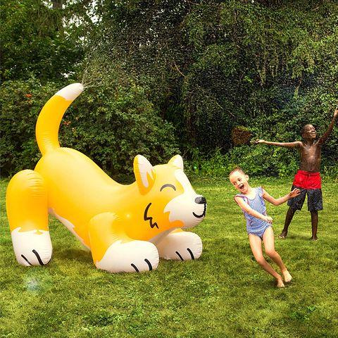 Inflatable, Games, Yellow, Fun, Grass, Summer, Leisure, Recreation, Happy, Garden,