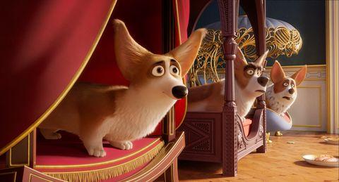 【電影抓重點】《女王的柯基》根本是一部英國皇宮秘史!女王和柯基的日常都在這5張圖裡!