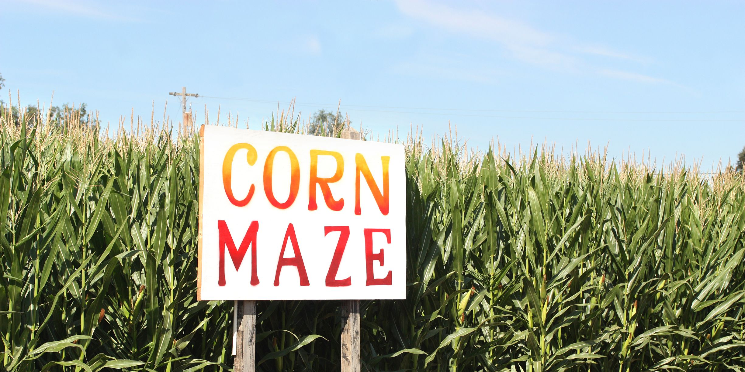 The 25 Best Corn Mazes Across the Country to Visit This Fall