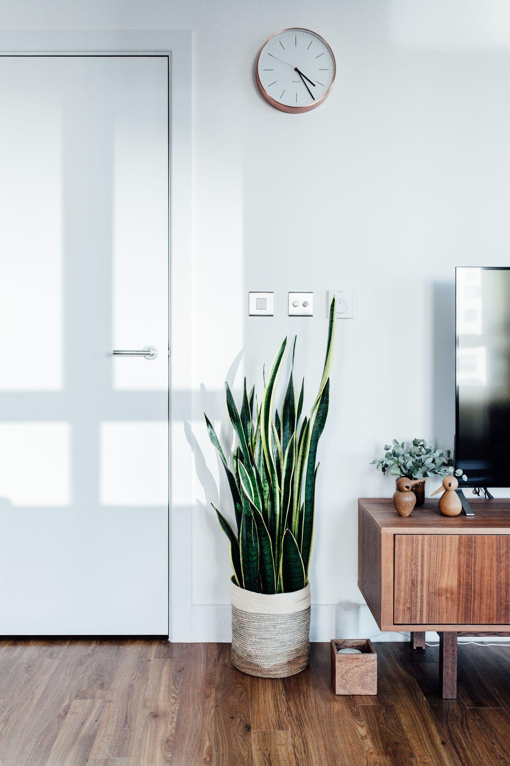 A corner of living room