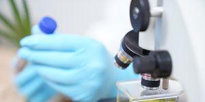 Coronavirus Vaccine Research in Laboratory