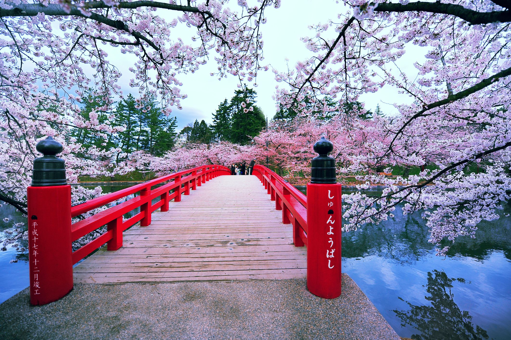 Watch Giappone: 7 cose da sapere prima di partire, suggerite dal traduttore di Haruki Murakami video