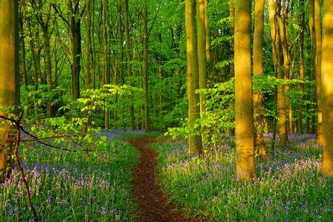 best walks uk