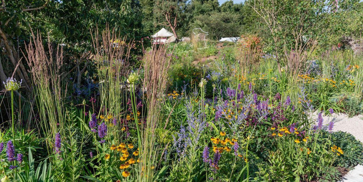 Garden Inspiration cover image