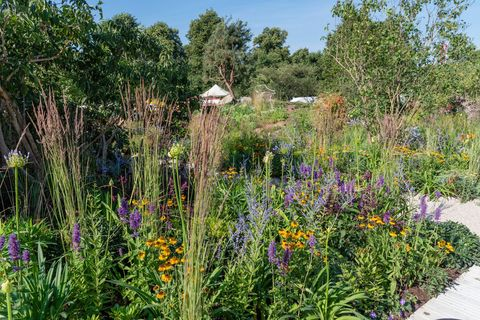 Countryfile's 30th Anniversary Garden. Designed by: Ann-Marie Powell. Feature Garden. RHS Hampton Court Palace Flower Show 2018
