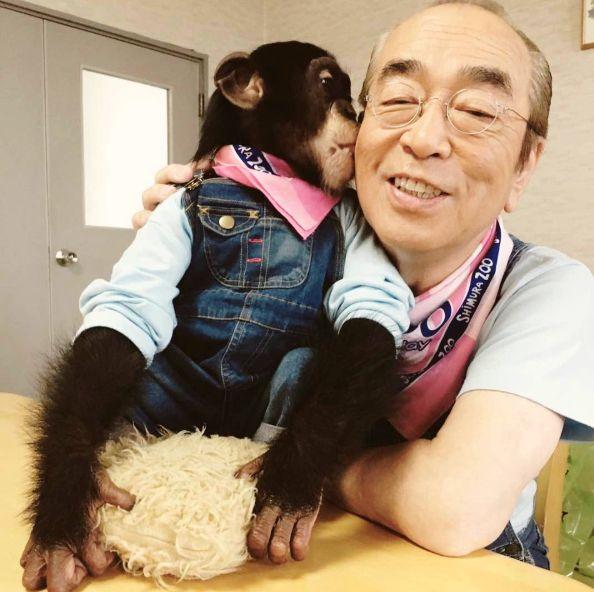志村健因新冠病毒辭世!「我認為搞笑基本上是很溫暖的。」,8句語錄回顧志村健的喜劇天王人生