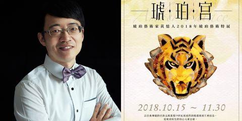 Bengal tiger, Felidae, Head, Tiger, Big cats, Wildlife, Carnivore, Jaguar,