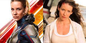 Evangeline Lilly, 蟻人, 黃蜂女,漫威女英雄,伊凡潔琳莉莉, 作家, 哈比人, 女力, 復仇者聯盟, 蟻人與黃蜂女,