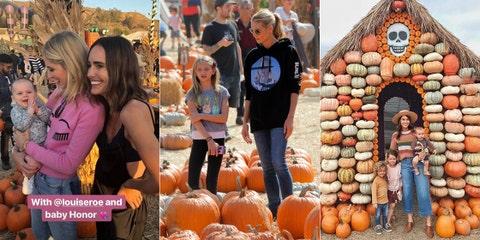 Pumpkin, Gourd, Calabaza, Local food, Market, Vegetable, Winter squash, Natural foods, Marketplace, Cucurbita,