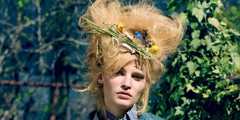 Fashion, Canidae, Headpiece, Fawn, Headgear, Blond, Photography, Companion dog, Plant, Carnivore,