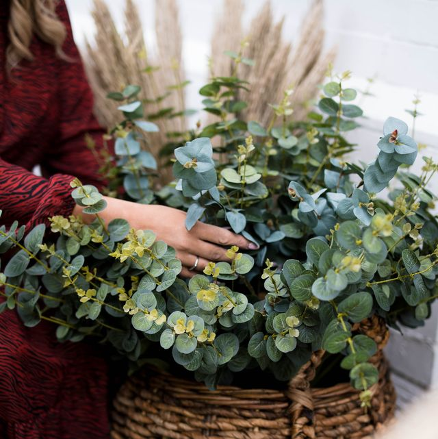 how to create an autumnal display