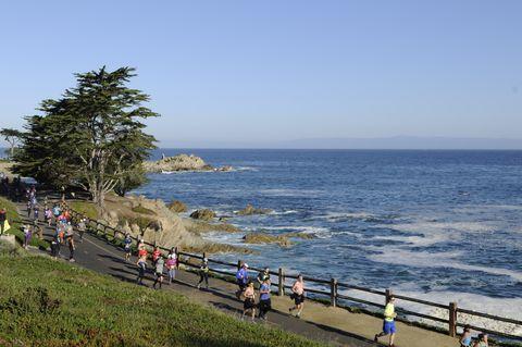 Coast, Sea, Sky, Shore, Ocean, Beach, Coastal and oceanic landforms, Tree, Tourism, Cloud,