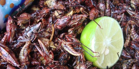 crickets and lime