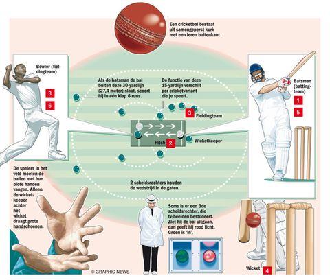 cricket-regels-beginners