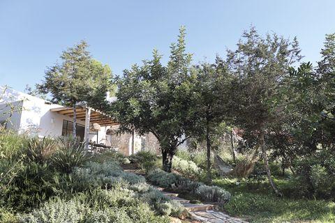 path up through substantial gardens to the front door of sarah crook's ibizan villa