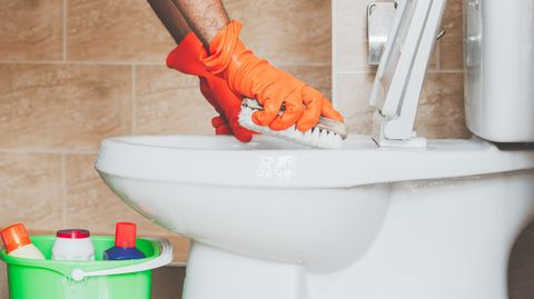 How to Clean the Toilet - Disinfect Your Toilet