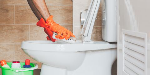 How to clean the toilet in minutes