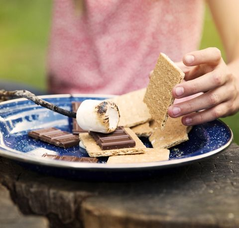 Cropped image of girl preparing smores in plate on tree stump