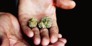 Cropped Image Of Hands Holding Marijuana